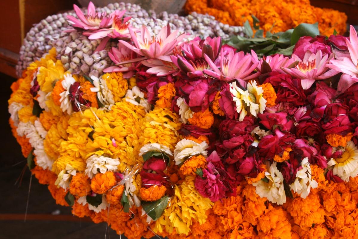 Varanasi Diaries - Part 1