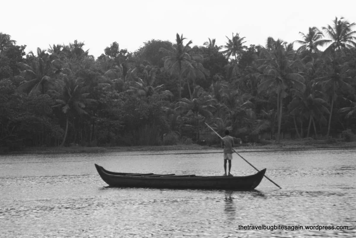 Kerala - Kovalam, Alleypey, Kochi and Wayanad